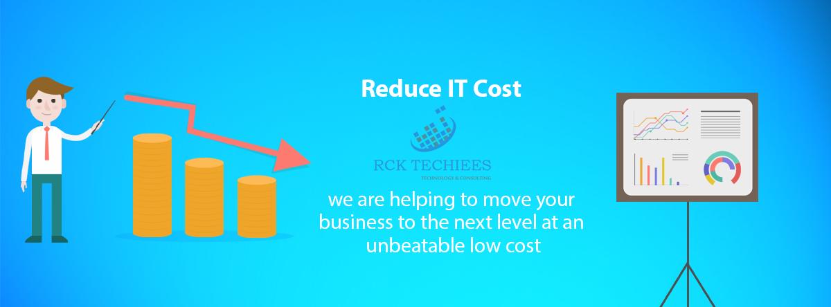 Reduce-IT-Cost-florida